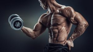 Dosages of stanozolol